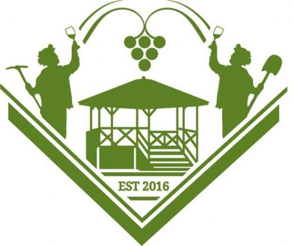Verde Valley Wine Festival (2)