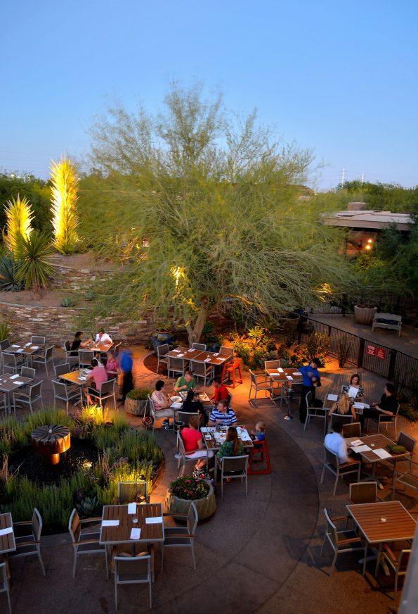 gertrudes desert botanical garden - Desert Botanical Garden