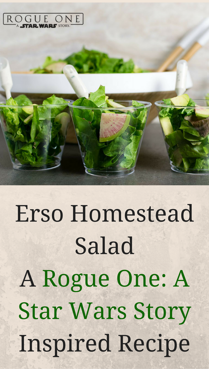 [AD] For their 2nd Rogue One: A Star Wars Story inspired recipe, The Geeks pay tribute to the Erso's home on Lah'mu with their Erso Homestead Salad. 2geekswhoeat.com #StarWarsRecipes #StarWars #AppetizerRecipes #GameDayRecipes #Appetizers #Salad #GeekyFood #GeekyRecipes