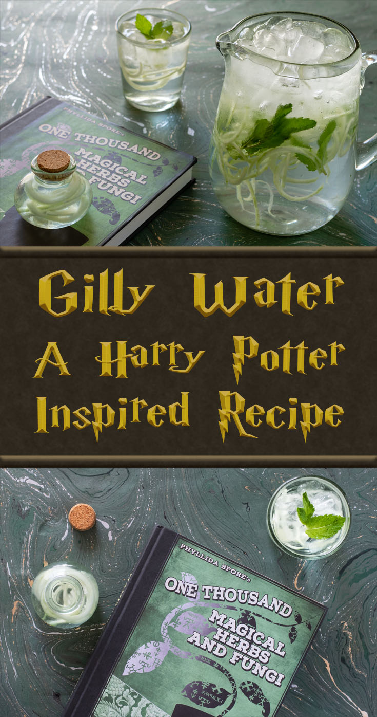 Harry Potter Recipes | Harry Potter Drinks | Harry Potter and the Goblet of Fire | Looking for a refreshing drink inspired by Harry Potter? The Geeks have you covered with their Gilly Water recipe. You may not be able to breathe underwater but you'll feel refreshed! 2geekswhoeat.com